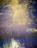 Crépuscule de lac au printemps Photographie stock