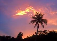 Crépuscule des Caraïbes Photo stock