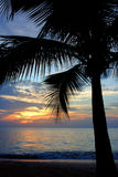 Crépuscule tropical Photographie stock libre de droits