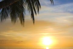 Crépuscule tropical Photographie stock