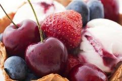 Crême glacée avec des fruits Photographie stock libre de droits