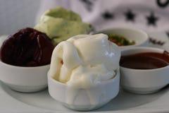 Crême glacée Crème glacée italienne servie d'un plat photographie stock