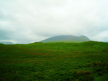 Crête écossaise de pays de colline Images libres de droits