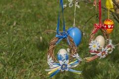 Crête bleue et rouge de Pâques avec l'herbe verte à l'arrière-plan image stock