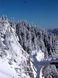 Crête d'aigle et de montagne Image libre de droits