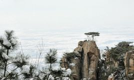 Crête de montagne Photos libres de droits