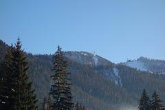 Crête de montagne de Postavaru Photo libre de droits