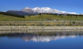 Crête de Mt Elbert dans le Colorado Photo libre de droits