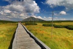 Crête de sentier piéton et de Snezka en montagnes de Krkonose Photos libres de droits