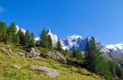 Crêtes d'Alpes avec des dessus d'arbre Photographie stock