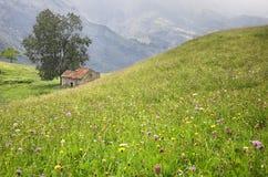 Crêtes de l'Europe, en Asturies, l'Espagne Photo stock