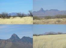 Crêtes de montagne Photo stock