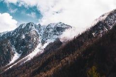 Crêtes de montagne couronnées de neige des montagnes d'Altai contre le ciel Images stock