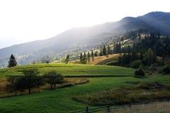 Crêtes de montagne, forêt conifére et pré vert Photographie stock libre de droits