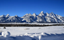 Crêtes grandes de Teton dans la réserve forestière de Bridger-Teton au Wyoming Photos stock