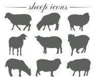 cría de animales crianza de ovejas sistema de siluetas del vector en blanco Imagen de archivo