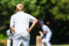 Críquete Fielder Batsman Ball Fotos de Stock