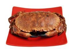 crab красный цвет тарелки Стоковое фото RF