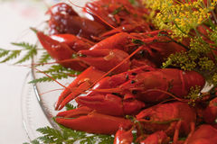 Crab Stock Images