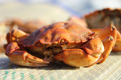 Crab. On a bamboo plate Royalty Free Stock Images