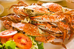 Crab. Boil of thai food royalty free stock images