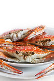 Crab. Nutrition delicious flower crab Stock Photo