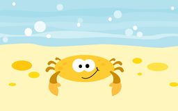 Crab. A funny little crab at the sea shore Royalty Free Stock Photo
