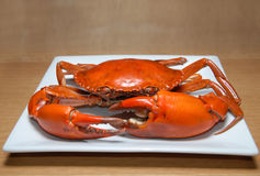Crab. With square plate wood table Royalty Free Stock Photo