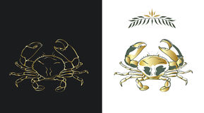 Crab. Two stylized sketches of a crab in gold and dark green colors on white and black background. Contour of a crab and a fill can be easily separated from a Stock Photo