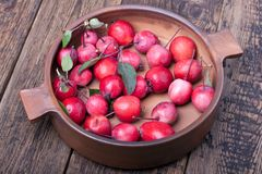 Red apples in a ceramic pot. On wooden table stock photography