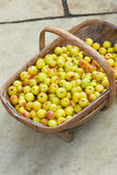 Crab Apples In Wooden Basket Royalty Free Stock Photography
