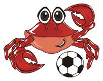 Crab with a ball Royalty Free Stock Image