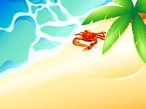 Crab beach Stock Photo