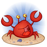 Crab at the Beach Royalty Free Stock Photography