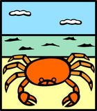 Crab in a beach vector illustration Stock Images