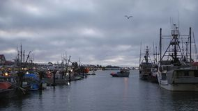 Steveston Crab Boats, Early Morning Departure stock video footage