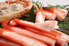 Crab. Boiled snow crab legs, traditional Japanese food in winter stock image