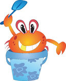 Crab in the bucket. Red crab in the blue bucket Stock Photos