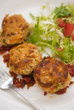 Crab cakes with a garden salad Royalty Free Stock Images