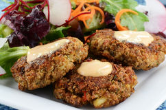 Crab cakes with salad. Freshly cooked crab cakes with baby greens salad Stock Photography