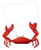 Crab Card. An adorable cartoon crab presenting a blank card Stock Photography