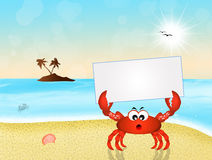 Crab with card Royalty Free Stock Image