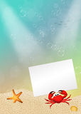 Crab with card Stock Images