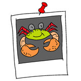Crab cartoon in polaroid Stock Photography