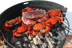 Crab on charcoal grill Stock Photos