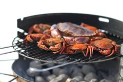 Crab on charcoal grill Royalty Free Stock Photos