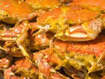 Crab is Chinese famous food Stock Image