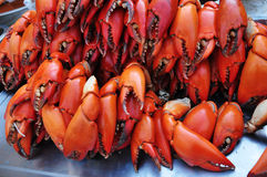 Crab claw. The cooked crab claw turned red color after boiled Royalty Free Stock Photo