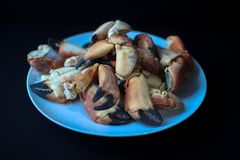 Crab Claws from Atlantic Coast stock image