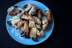 Crab Claws from Atlantic Coast royalty free stock photography